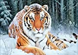 #6: DIY 5D Diamond Painting by Number Kit, Snow Tiger Crystal Rhinestone Embroidery Cross Stitch Arts Craft Supply Canvas Wall Decor