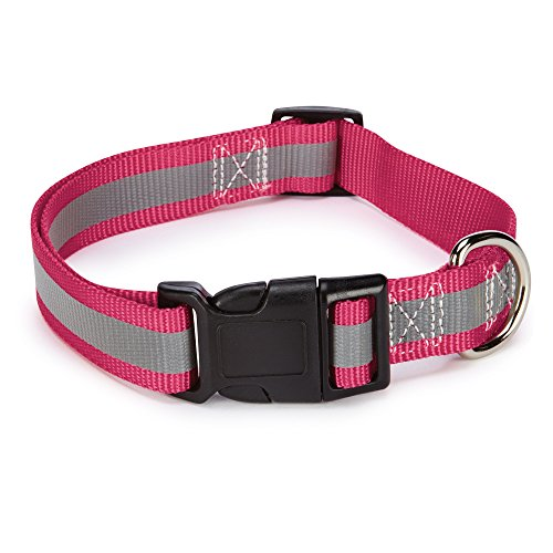 "Guardian Gear Brite Reflective Dog Collar, Fits Necks 18"" to 26"", Raspberry"