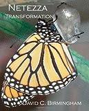 Netezza Transformation, David Birmingham, 1453874054
