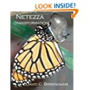 Netezza Transformation: Taming the dragon without alchemy, sorcery or strange potions