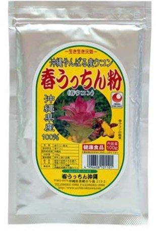 【春ウコン】春うっちん粉 アルミ袋入 100g入×20 B00P4UO5JI   20P