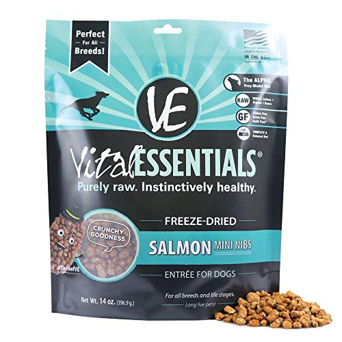 Vital Essentials Freeze Dried Salmon Dog Food Or Mix-in - Grain Free - Hypoallergenic - Omega 3 & 6 for Healthy Skin & Coat - 14 oz Resealable Bag