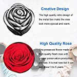 Preserved-Roses-Real-Rose-Handmade-Preserved-Fresh-Flower-Red-Roses-Never-Withered-Romantic-Gifts-for-Female-Birthday-Anniversary-Valentines-Day