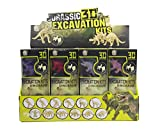 Imex Dinosaurs Skeleton 3D Dino Fossil Excavation Science Kits 12 Pack Assorted Dinos STEM