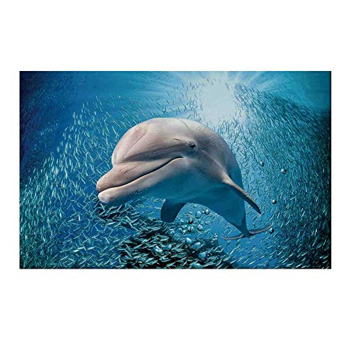 YOLIYANA Sea Animals Decor Durable Door Mat,A Bottlenose Dolphin in Ocean Fish Sunlight in Marine Natural Underwater for Home Office,17.7