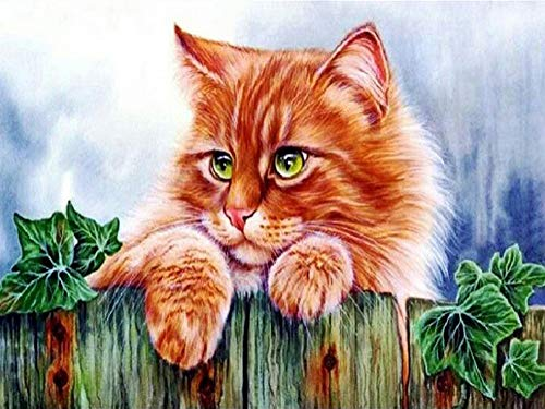 iFymei Paint By Number Kits Paintworks DIY Oil Painting for Kids and Adults (Cat)