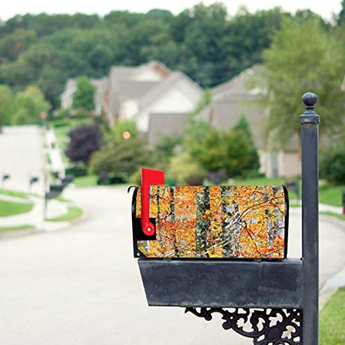 """HTJZH Autumn Birch Grove Orange Grass Mailbox Covers Standard Size Original Magnetic Mail Cover Letter Post Box 21"""" Lx 18"""" Wonly Mailbox Cover"""