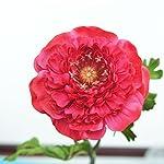 Lily-Garden-6-Stems-Silk-Ranunculus-Artificial-Flowers-Red
