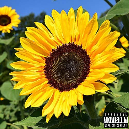 Flowey (feat. Lil Floers) [Explicit]