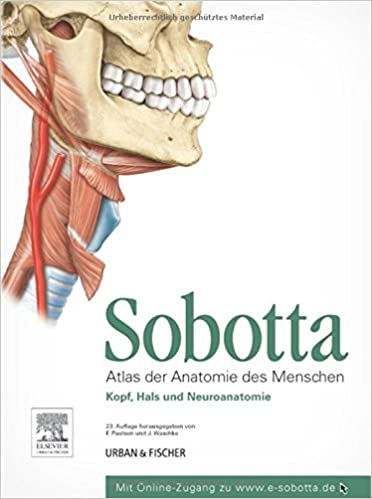 Sobotta, Atlas der Anatomie des Menschen Teil 3: Kopf, Hals und ...
