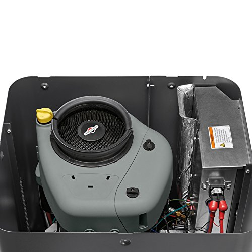 Briggs & Stratton 40445 8000-watt Home Standby Generator System with 50-Amp Automatic...