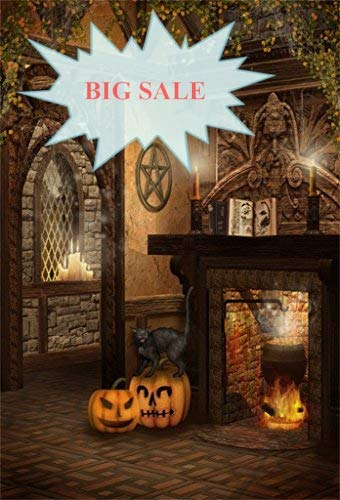 (Baocicco Halloween Backdrop Wizard House Interior 5x7ft Vinyl Photography Background Magic Book Grimace Pumpkin Wildcat Fireplace Liquid Medicine Zombie Party Halloween Party Children Adult)
