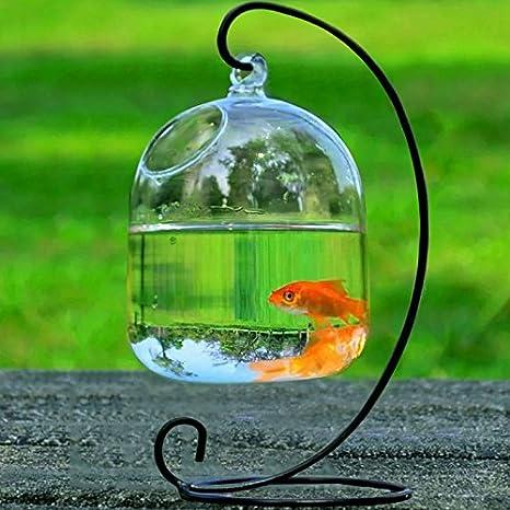 Bolange Jarrón de Cristal Transparente Colgante Que cuelga el florero decoración de Acuario de Acuario de Forma de Acuario de Vidrio Hecho a Mano ...