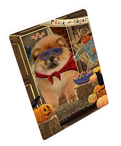 Enter at Own Risk Trick or Treat Halloween Chow Chow Dog Large Refrigerator/Dishwasher Magnet RMAG79392 (8.7