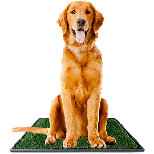 Ideas In Life Dog Potty Grass Pee Pad - Artificial Pet Grass Patch for Dogs Indoor Outdoor Litter Box Large 30 inch x 20 inch - e-Book for Potty Training (Ideas Patio Apartment Outdoor Small)