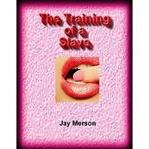 The Training of a Slave (BDSM erotica)