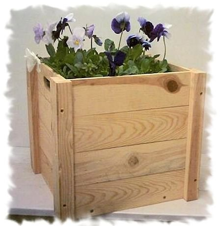 Natural Pine Wooden Plant Box 14 x 14 x 12 Tall Plants not included.