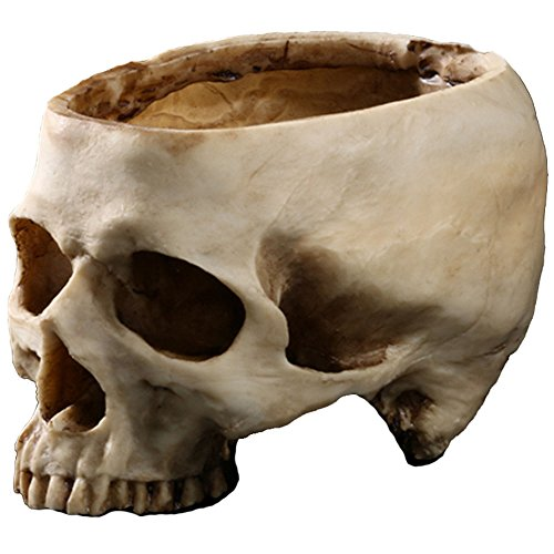 Resin Skull Flower Pot Personalized Decoration Halloween Home Antique Appliances Ashtray - Personalized Flower Pots