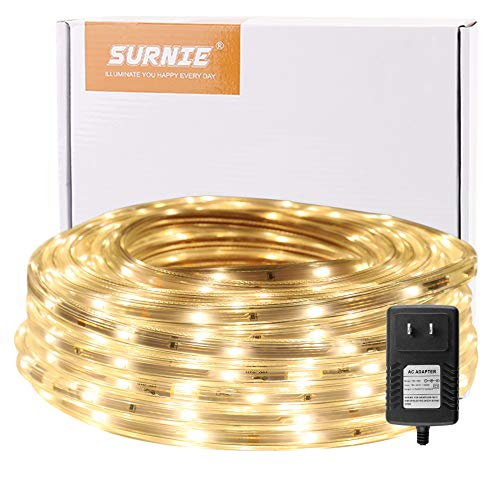 Outdoor 12V Rope Light