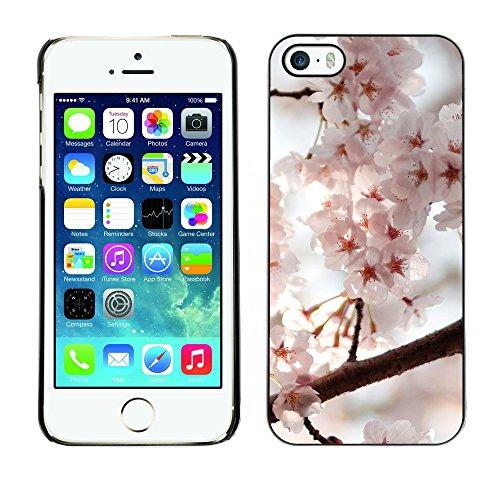 Premio Sottile Slim Cassa Custodia Case Cover Shell // F00032342 Japon Sakura // Apple iPhone 5 5S 5G