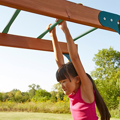 Swing N Slide Ws 4564 Metal Monkey Bars With Six 21 5
