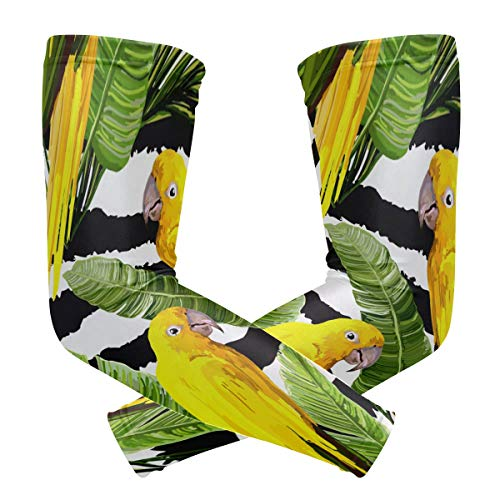 Summer Tropical Bird Parrot Arm Sleevse for Men Youth UV Protection Cooling Basketball Baseball Running Golf Sports Cycling Long Sleeves