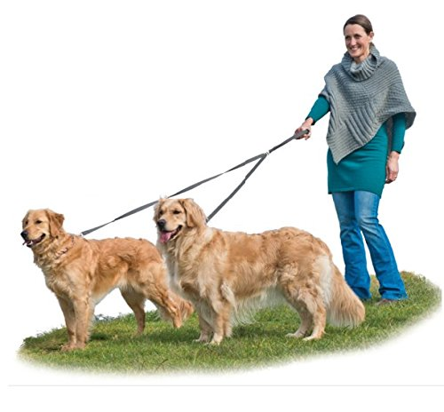 Furhaven Pet Walking Double Gunmetal product image
