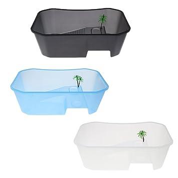 terrarium tortue plastique