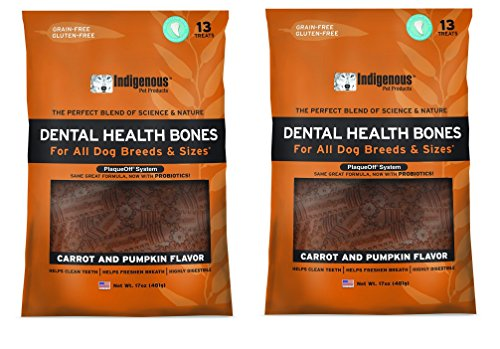 (2 Pack) Indigenous Dental Health Bones Carrot and Pumpkin Flavor - 17 Ounces each ()