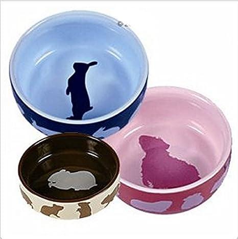 Conejo y Guinea Pig Jaula Set de regalo para enano de conejo y ...