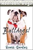 Adorable Dogs: Bulldogs (Cute!)