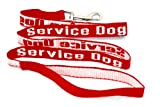 Service Dog Leash – Red, My Pet Supplies