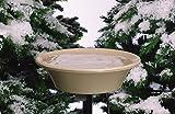 Allied Precision Industries 14B Four Seasons Heated Bird Bath with EZ Tilt Deck Mount and Pole Mount, 14-Inch