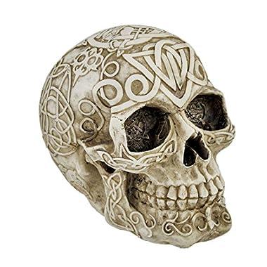 Celtic Owl Knotwork Human Skull Statue Pagan