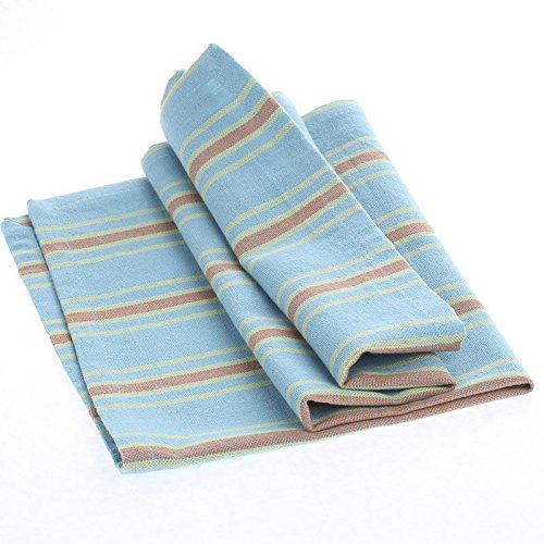(Collection of 12 Square Sky Blue with Spring Green and Terra Cotta Stripe Cafe Cloth Napkins for Dinner Parties, Decorating and Everyday Use)