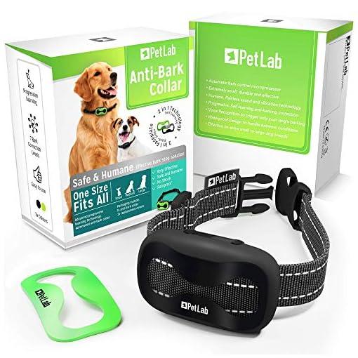 PetLab Dog Anti Bark Collar for Small Large Dogs No Shock Barking Collars Anti Barking Device Training Dog Barking… Health and Household dog training
