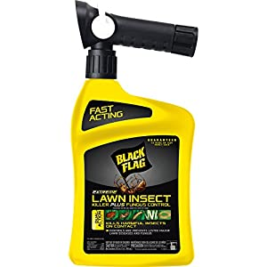 Black Flag Extreme Lawn Insect Killer + Fungus Control, 32 oz Ready-to-Spray