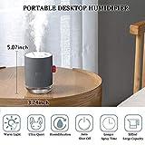 FoPcc 500ml Portable Humidifier, Mini Cool Mist