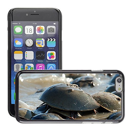 Bild Hart Handy Schwarz Schutz Case Cover Schale Etui // M00135333 Coast Crab Horseshue Polyphem // Apple iPhone 6 PLUS 5.5""