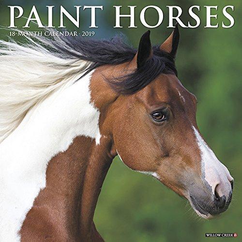 Paint Horses 2019 Wall Calendar