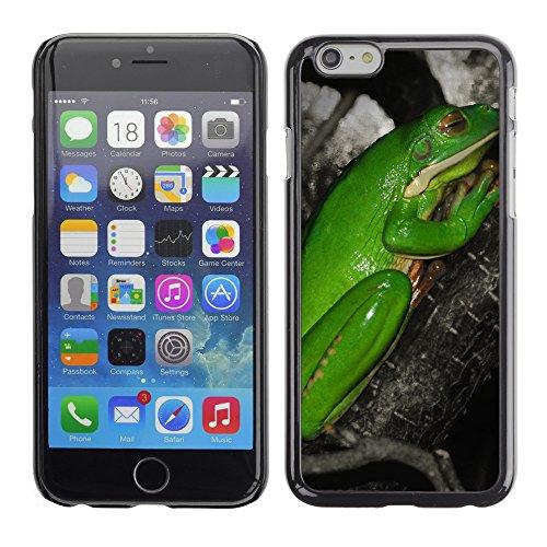 "Premio Sottile Slim Cassa Custodia Case Cover Shell // V00003324 grenouille prier // Apple iPhone 6 6S 6G 4.7"""