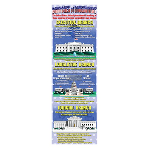McDonald Publishing Mc- Branches of Government Colossal Concept Poster, 18.27 Wide, 22.2 Length, 0.16