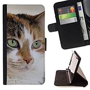 Momo Phone Case / Flip Funda de Cuero Case Cover - Mutt Mestizo Cat House Cat Técnica; - HTC One A9