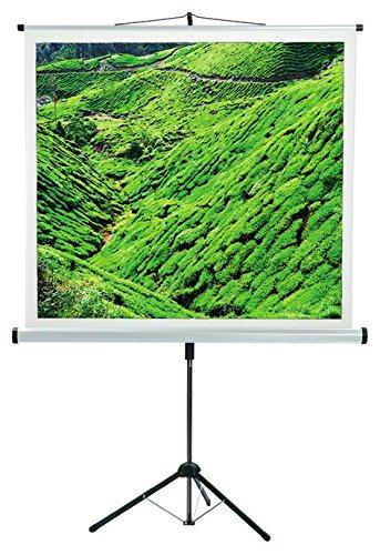 Medium CombiFlex Budget, 180 x 180 cm Pantalla de proyección 2,54 ...