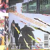 Son Goku - Crashkurs - Four Music - FOR 508441 2