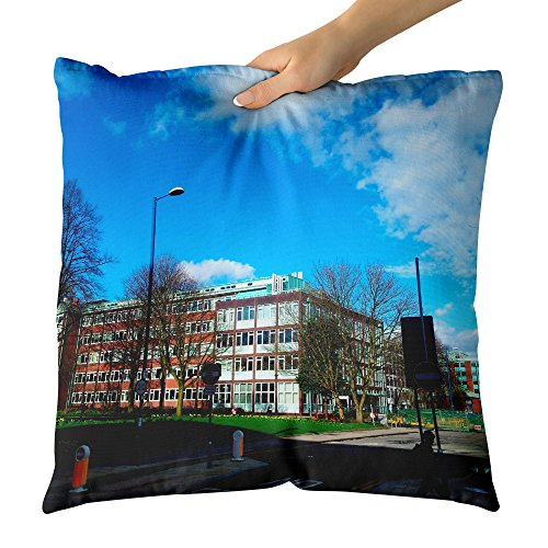 Westlake Art Decorative Throw Pillow - Sheffield Sky - Photography Home Decor Living Room - 18x18in (x8r-816-f52)