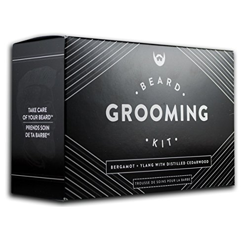 Beard Grooming Kit Conditioner Anti Static