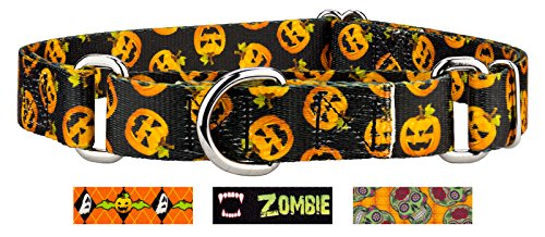 Country Brook Design Happy Jack Martingale Dog Collar - Large -