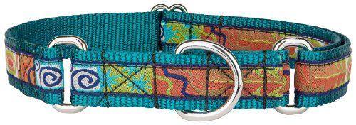 Country Brook Design Fall Frenzy Woven Ribbon on Teal Martingale Dog Collar Limited Edition - Large