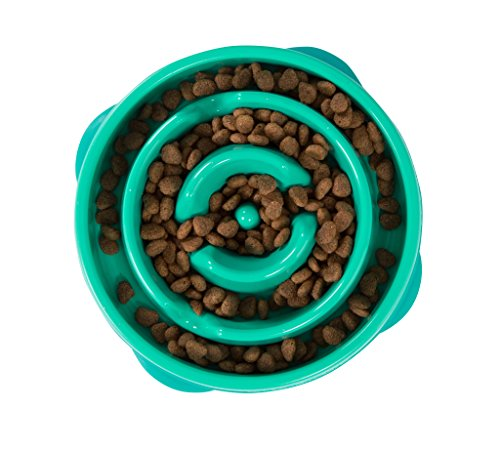 Slow Feeder Dog Bowl Fun Feeder Stop Bloat Bowl for Dogs by Outward Hound, Large, Teal